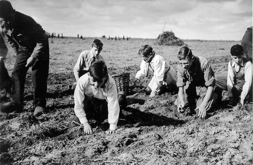 Werken in de buitendienst, 1943.