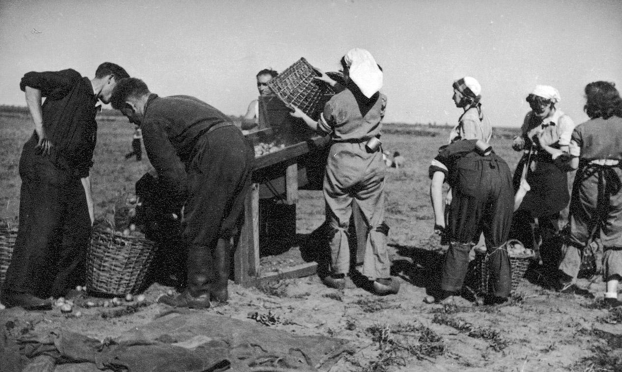 Werken buiten het kamp, 1943/1944.